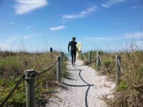 Turtle Beach Access Point