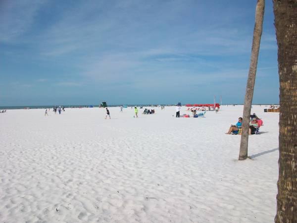 Siesta Beach - America's #1 Beach