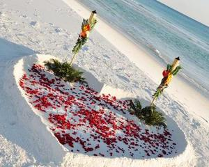 Rose Heart Beach Wedding Package
