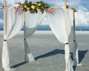 Tropic Ice Beach Wedding