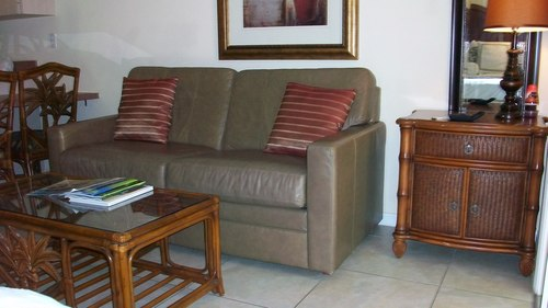 Pull out sleep sofa in room