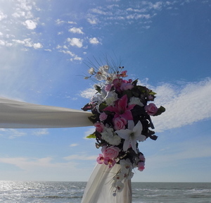 Siesta's Destination Beach Wedding Package Image 2
