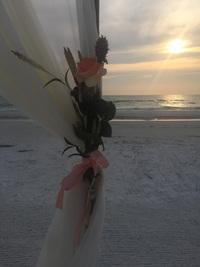 Sarasota Wedding Package - Coral Bay
